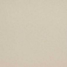 Коллекция Glassy, арт. BN 218302