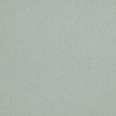 Коллекция Glassy, арт. BN 218314